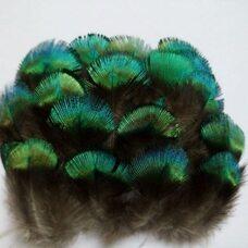 Зеленые перья павлина 4-5 см. 10 шт