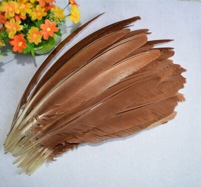 Перья павлина 30-35 см. 1 шт