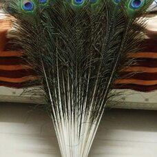 Натуральные перья павлина 70-80 см. 1 шт.