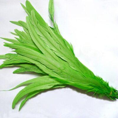 Перья петуха 30-35 см. 1 шт. Салатовый цвет