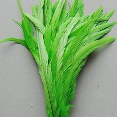 Перья петуха 35-40 см. 1 шт. Салатовый цвет