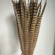 Перья фазана 50-55 см. 1 шт. Натуральный цвет