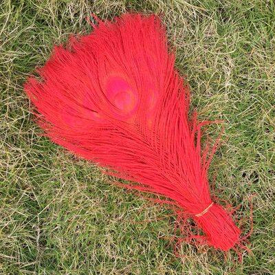 Цветные перья павлина 25-30 см. Красный цвет