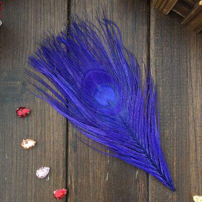 Перья павлина - Павлиний глаз 12-16 см. Синего цвета