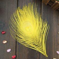 Перья павлина - Павлиний глаз 12-16 см. Желтого цвета