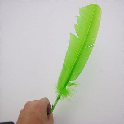 Гусиное перо 27-33 см. 1 шт. Салатового цвета