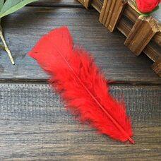 Плоские перья индейки 12-18 см. 20 шт. Красный цвет