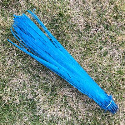 Перья фазана 40-45 см. (Хвост) 1 шт. Голубого цвета