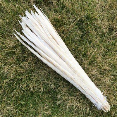 Перья фазана 40-45 см. (Хвост) 1 шт. Белого цвета
