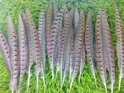 Декоративные перья Pheasаnt 25-30 см. Натуральный цвет