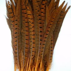 Перья фазана 25-30 см. Оранжевые