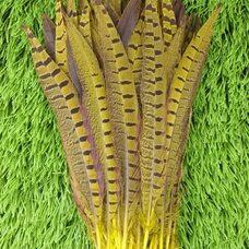 Перья фазана 25-30 см. Желтые