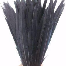 Декоративные перья фазана 25-30 см. Черные