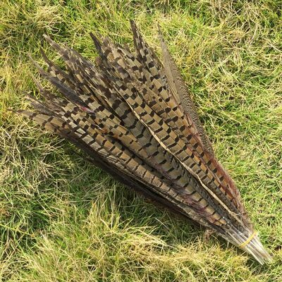 Перья фазана 35-40 см. Натурального цвета
