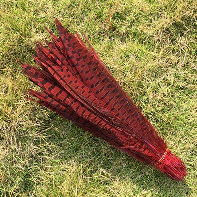 Декоративные перья Pheasаnt 30-35 см. Красные