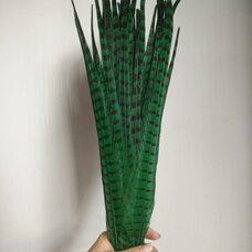Перья фазана 45-50 см. Зеленые