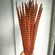 Перья фазана 45-50 см. Оранжевые