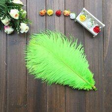 Перья страуса 30-35 см. Салатовый цвет