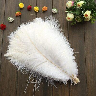Перья страуса 35-40 см. Цвет белый