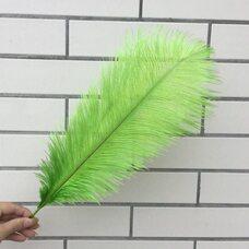 Премиум перья страуса 40-45 см. Салатовый цвет
