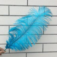 Премиум перья страуса 40-45 см. Голубой цвет