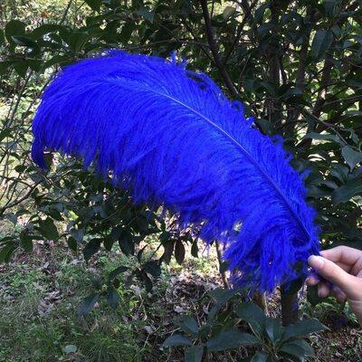Премиум перья страуса 50-55 см. Синий цвет