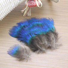 Голубые перья павлина 3-5 см. 20 шт.