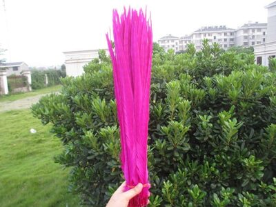 Декоративные перья Pheasаnt 40-45 см. (Хвост) 1 шт. Фуксия
