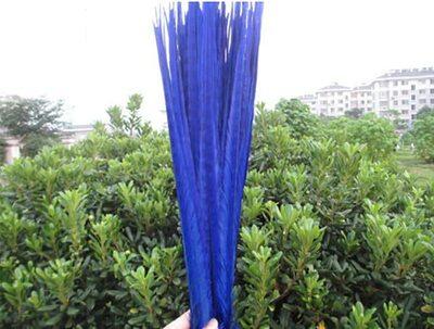 Декоративные перья Pheasаnt 40-45 см. (Хвост) 1 шт. Синего цвета