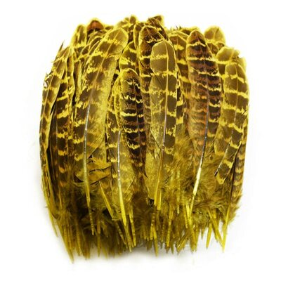 Перья фазана 10-15 см. 10 шт. Желтые