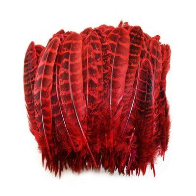 Перья фазана 10-15 см. 10 шт. Красные
