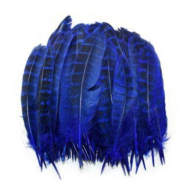 Перья фазана 10-15 см. 10 шт. Синего цвета