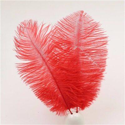 Перья страуса 15-20 см. Красный цвет