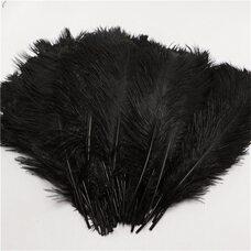 Перья страуса 35-40 см. Черный цвет