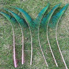 Перо павлина меч 30-35 см. 1 шт. Розовые