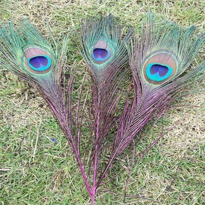 Перья павлина 25-32 см. 1 шт. Фуксия