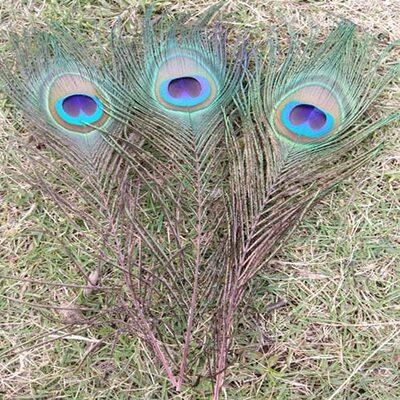 Перья павлина 25-32 см. 1 шт. Розовые