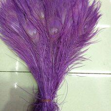 Цветные перья павлина 25-30 см. Светло-фиолетовый цвет