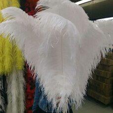 Премиум перья страуса 65-70 см. Белый цвет