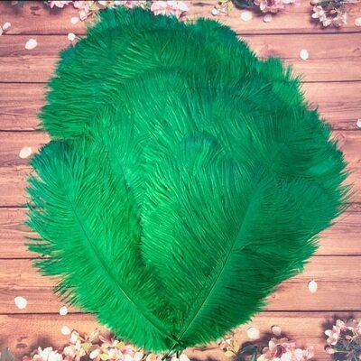 Перья страуса 25-30 см. Зеленый цвет