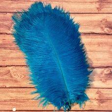 Перья страуса 25-30 см. Голубой цвет