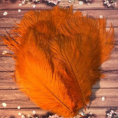 Перья страуса 25-30 см. Оранжевый цвет