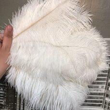 Перья страуса 30-35 см. Белый цвет