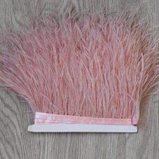 Тесьма из перьев страуса 13-15 см, 1м. - Пыльная роза