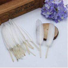 Перья утиные 10-15 см. 20 шт. Белый цвет