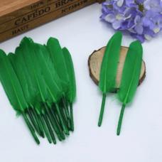 Перья утиные 10-15 см. 20 шт. Зеленый цвет