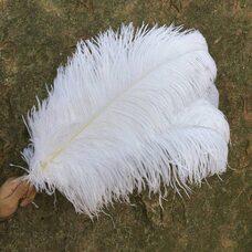 Премиум перья страуса 55-60 см. Белый цвет