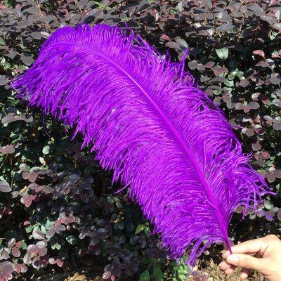 Премиум перья страуса 55-60 см. Фиолетовый цвет