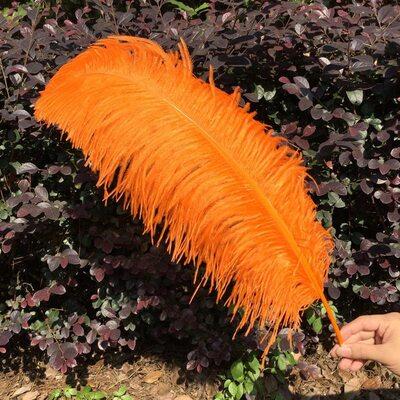 Премиум перья страуса 55-60 см. Оранжевый цвет