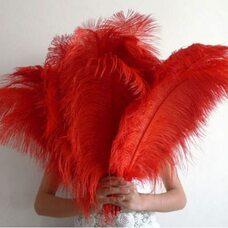 Премиум перья страуса 65-70 см. Красный цвет